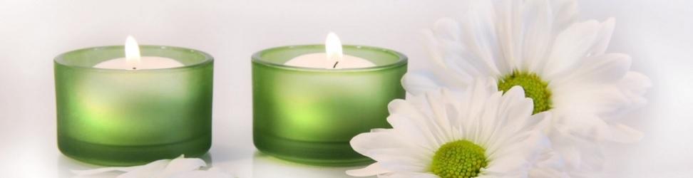 Terapia Florala a Dr Bach